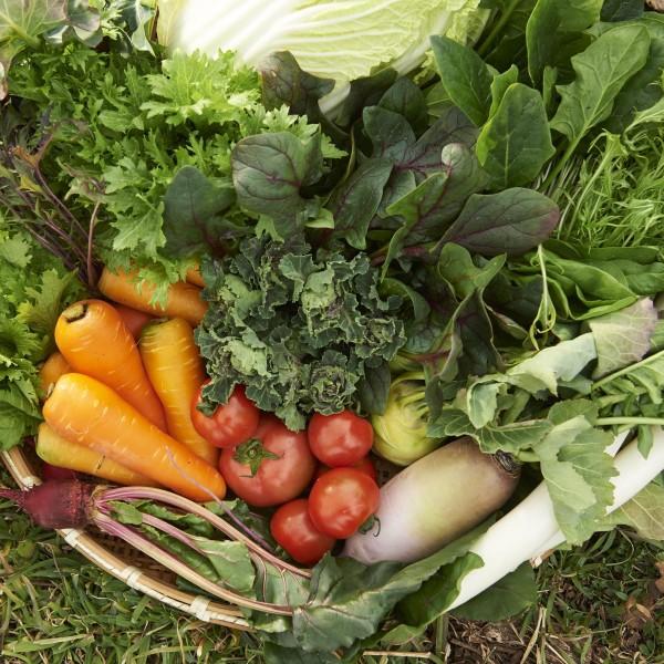 100種の野菜